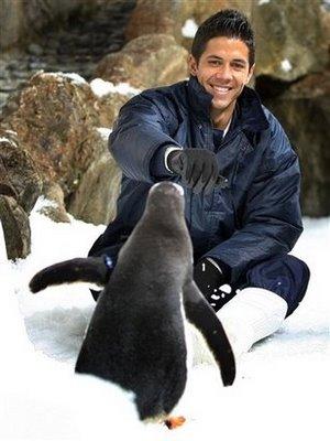 Verdasco o amigo dos pinguins, mas um chato