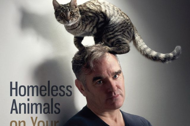 Singer Morrissey fronting the animal rights campaigners latest campaign-1156516