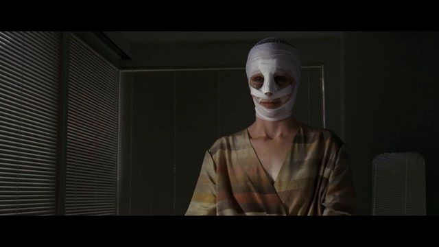 stanley-film-festival-goodnight-mommy-387492